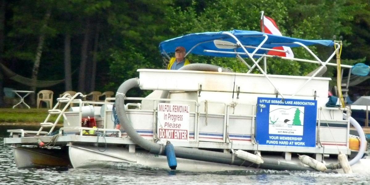 Milfoil Boat